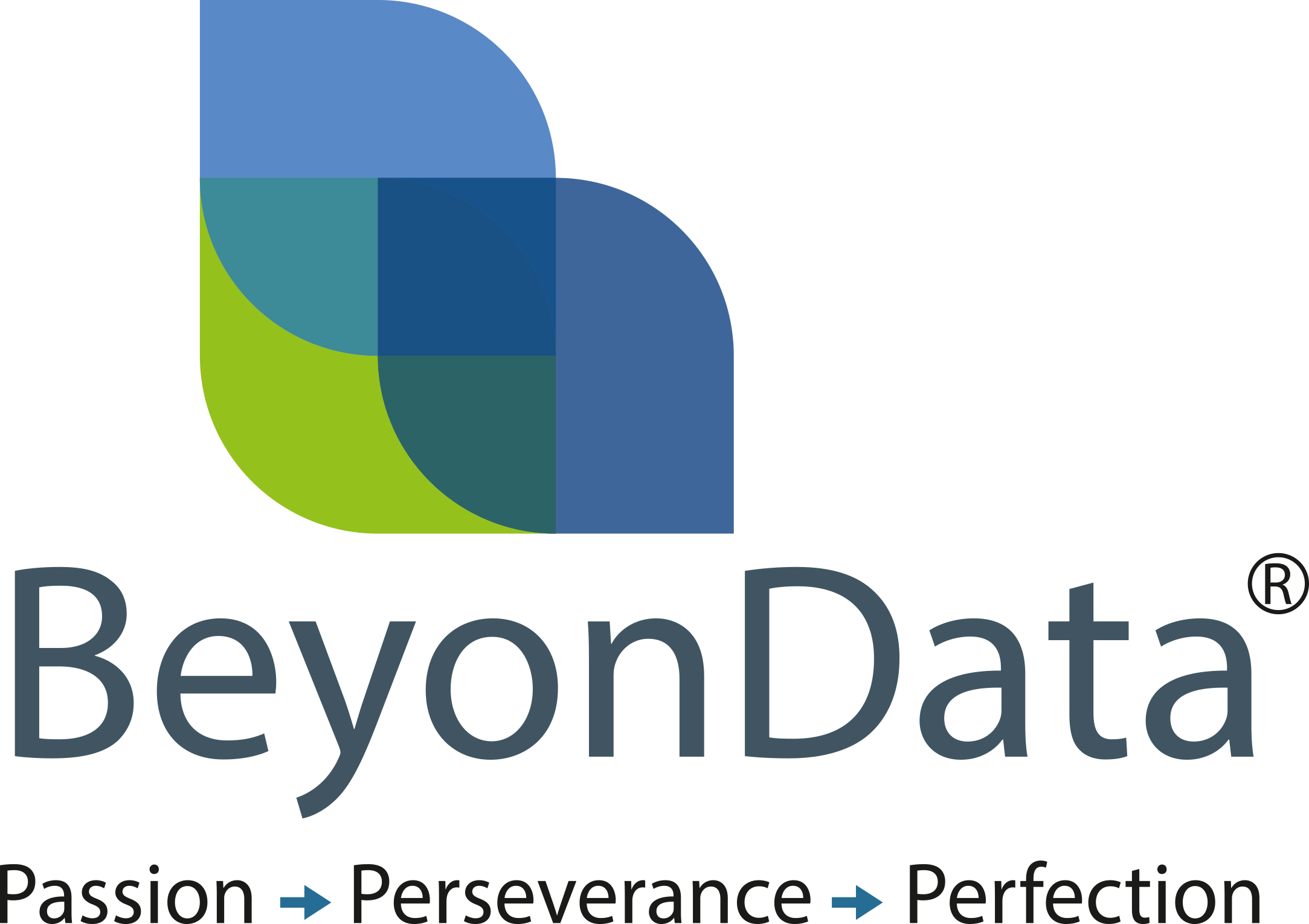 BeyonData Solutions Pvt. Ltd.